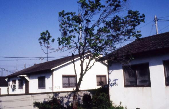 HOUSE_20111129_28
