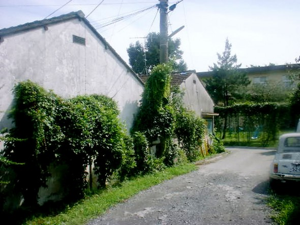 HOUSE_20111129_52