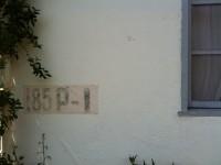 IMG_0677