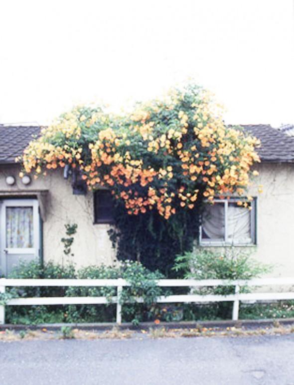 house05_20